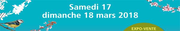 Actualités Rambouillet - La 3ème édition du Printemps des Créateurs à Rambouillet