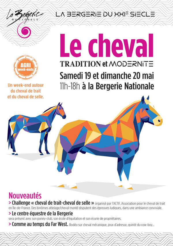 Le CHEVAL, entre tradition et modernité à la Bergerie Nationale à Rambouillet