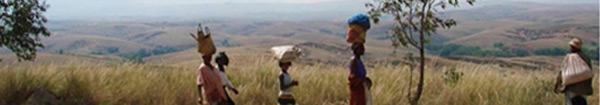 Actualités Rambouillet - Madagascar à Rambouillet : création d'une association