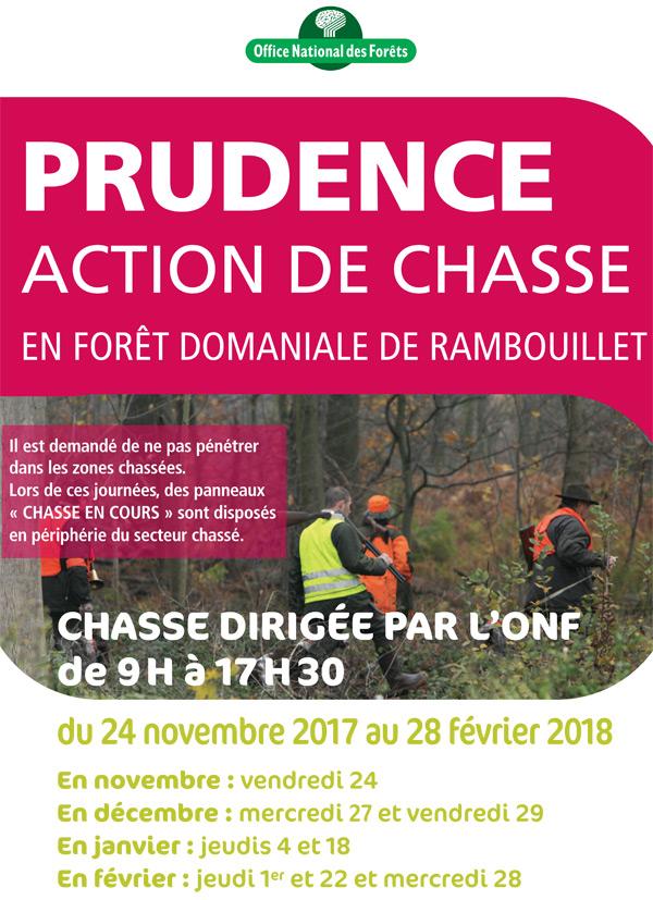 La chasse reprend bientôt en forêt domaniale de Rambouillet