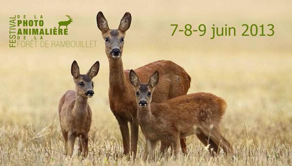 Le Festival de la photo animalière de la forêt de Rambouillet à l'Espace Rambouillet